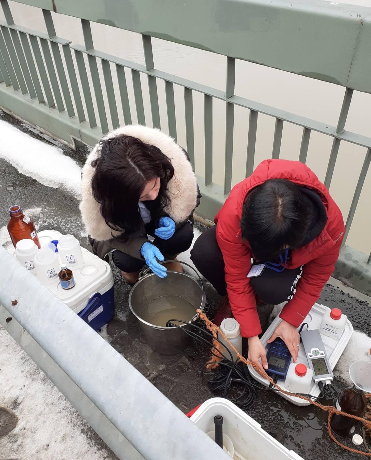 Річку Тиса забруднили важкими металами