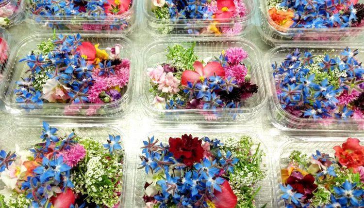 Під Києвом фермери вирощують їстівні квіти
