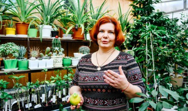 Фермерка із Запоріжжя розповіла, як виростити шоколадні апельсини, рожеві банани та ще понад 150 екзотів (фото)
