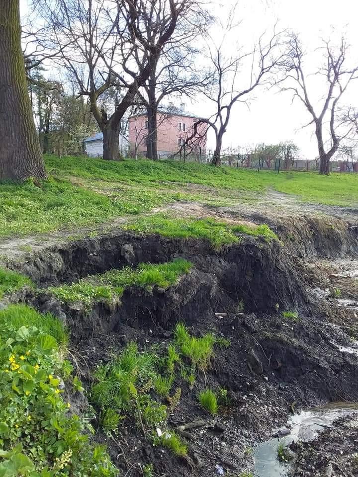 В Дублянах на Львівщині зсув ґрунту загрожує давньому дендропарку