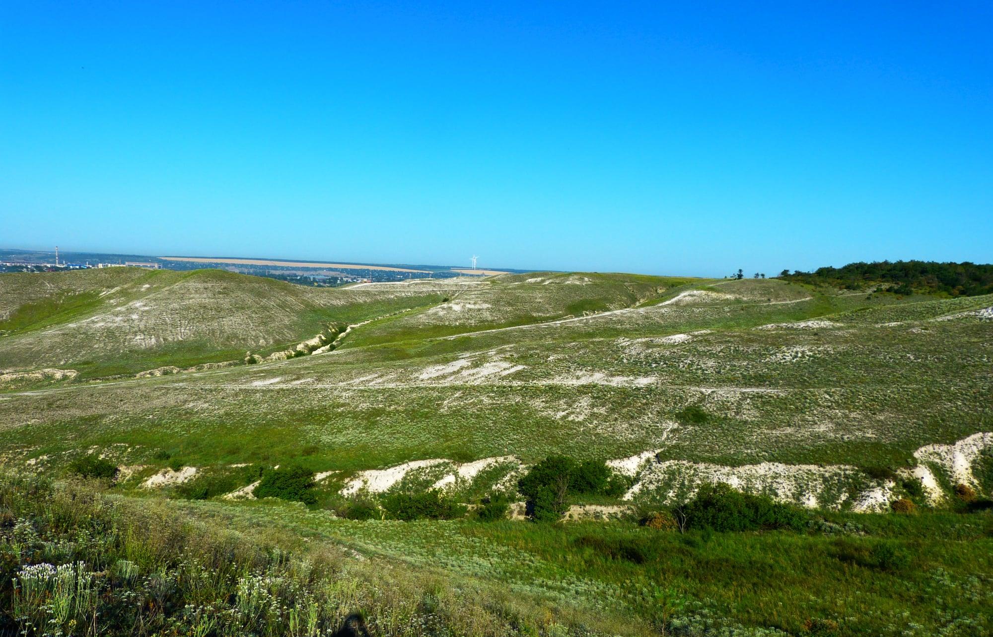 Рослини в степу на Донеччині могли бачити динозаврів — еколог (ФОТО)