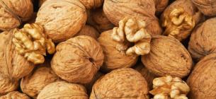 Селекционеры НААН вывели четыре новых скороплодных сорта грецкого ореха