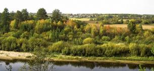 На Волині в межах природних заказників виявлено 2700 приватних ділянок