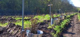 Фото:Черкаське обласне управління лісового та мисливського господарства