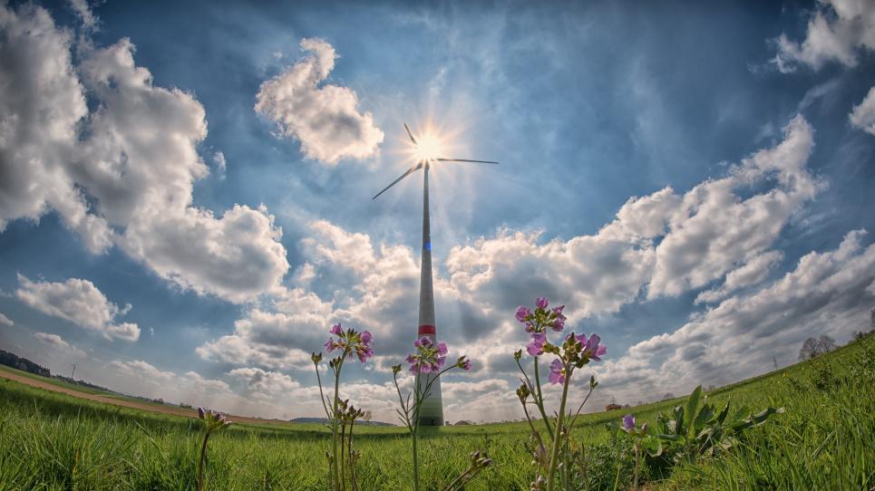 У Рівненській області «виростуть» 166-метрові вітряки. Фото: Pixabay