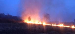 Майже тисяча загорань природи за добу - наслідки кволої державної політики у боротьбі з підпалами. Горить Ніжинський лісгосп