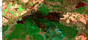 Територія, що пройдена пожежею 3-5 квітня 2020 року станом на 5 квітня.