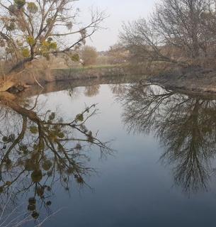 Рось, село Томилівка. Фото Олега Ковальчевського
