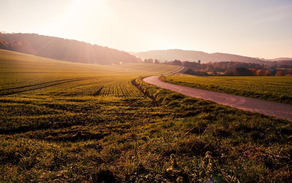 Дорогоцінна земля: в Україні злетить вартість угідь. Ринок землі стартує з 1 липня