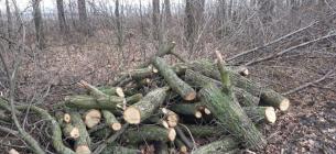 Фото:Facebook Державної екологічної інспекції України