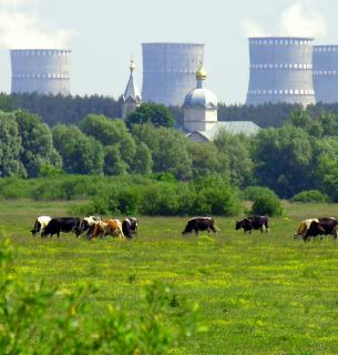 Фото: energoatom.com.ua