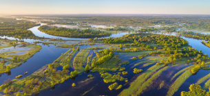 Панорама Полісся з висоти пташиного польоту. Після знищення русла тутешніх річок вона вже не буде такою романтичною. Фото з сайту savepolesia.org/(© Daniel Rosengren / FZS)