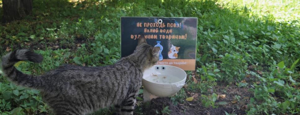 Фото: Житомирська міська рада