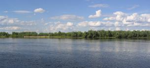 Припять — уникальная дикая река. Фото с сайта https://savepolesia.org/(© Daniel Rosengren / FZS)