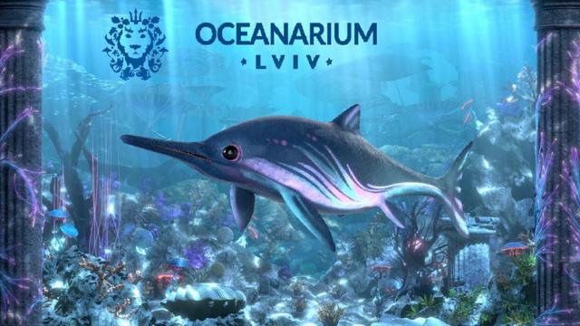 Все фото в новости взяты с сайта океанариума. Вероятно, они иллюстративны и не отражают будущей экспозиции