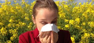 Австралійські вчені знайшли спосіб подолання алергії і астми назавжди