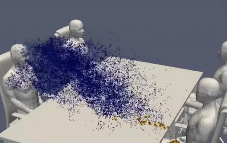 Фото: скриншот видео. Компьютерное моделирование распространения патогена