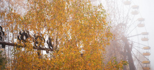 Фото: Державне агентство України з управління зоною відчуження