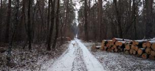 Фото: Українська природоохоронна група