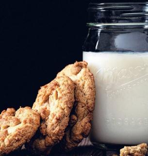 Вперше у світі створене «молоко» з мікроводоростей