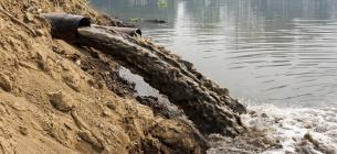 У Тернопільській області підприємство забруднило довкілля «мертвою» водою