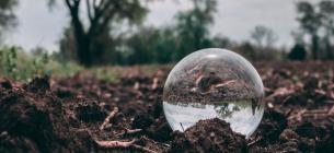 Міненерго хоче відродити видобуток торфу на території України