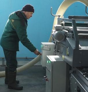 На Вінниччині запрацював перший в Україні завод з переробки часнику.Фото: Суспільне