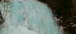 У Сколівських Бескидах здивували фотографіями зимової природи. Фото: Національний природний парк «Сколівські Бескиди»