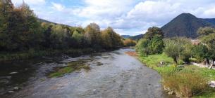 У річці Тиса виявили мідь і цинк