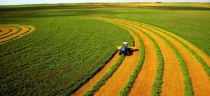 Експерти спрогнозували вартість гектара після відкриття ринку землі в Україні