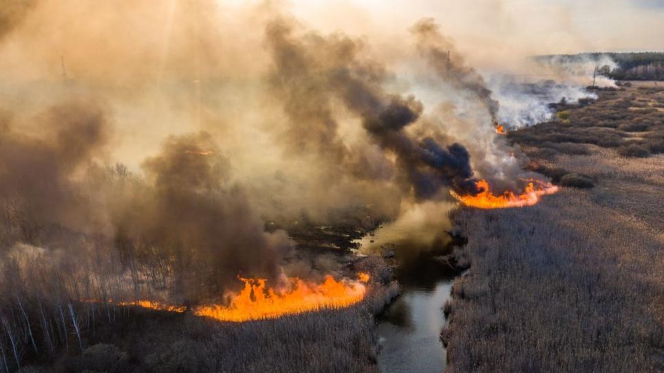 У ДАЗВ масштабні Чорнобильські пожежі не вважають причиною збільшення потужностей радіаційного забруднення у Чорнобильській зоні