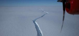 Айсберг може піти від континенту або сісти на мілину і залишитися поруч з льодовиком