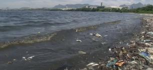 Самі відомі пляжі вкрили тонни пластикового сміття