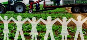 Кабмін прийняв документи, які регламентують діяльність агрокооперативів