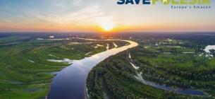 Екологи закликають підписати петицію про збереження природи та річок Полісся
