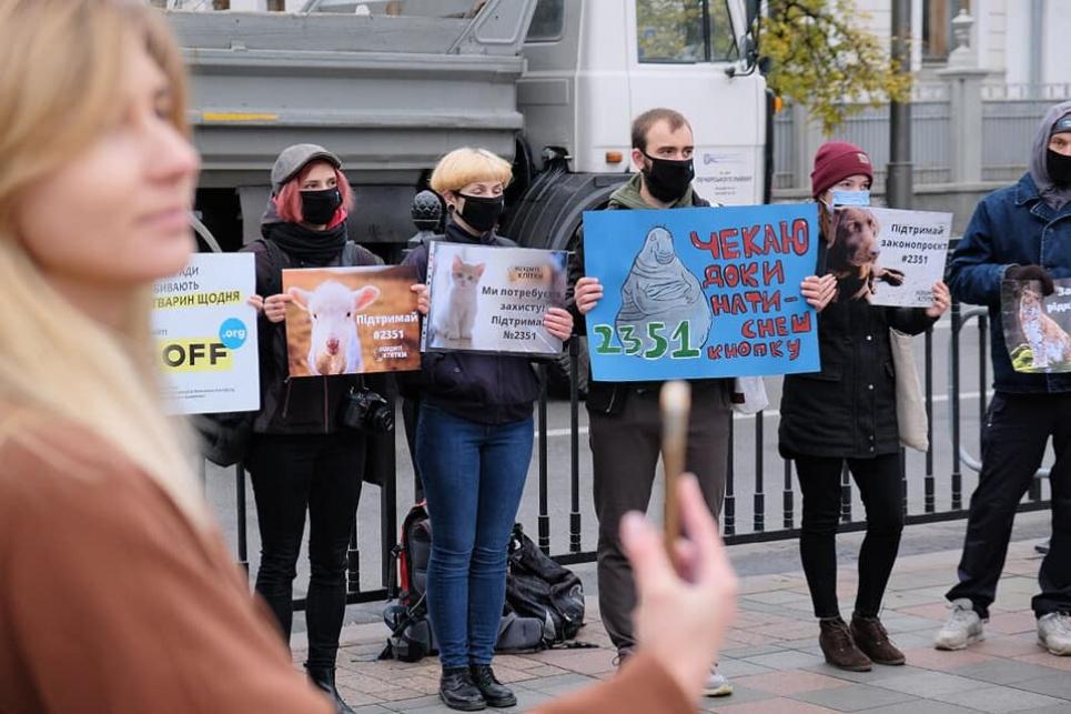Зоозахисники вимагають від народних депутатів прийняти закони на захист диких і безпритульних тварин