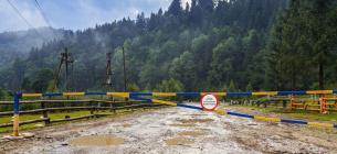 Екологи говорили про те, як врятувати українські ліси