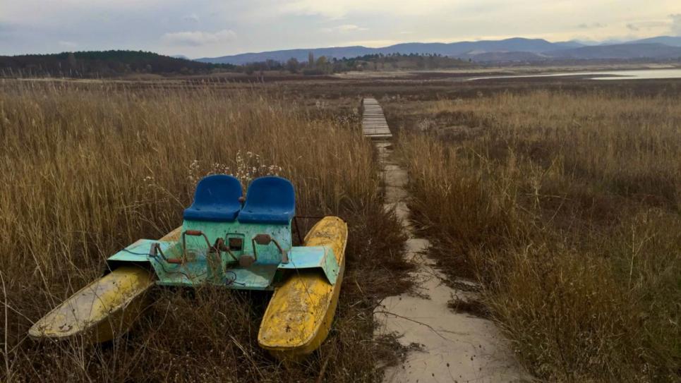 За сім років російської окупації Крим пережив декілька масштабних екологічних лих