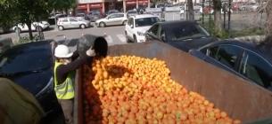 Іспанці робитимуть електрику з апельсинів