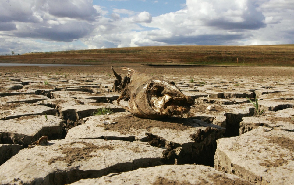 Окупація Криму негативно вплинула на водні ресурси півострова