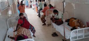 В Индии лабораторно подтвердили существование нового вида коронавируса