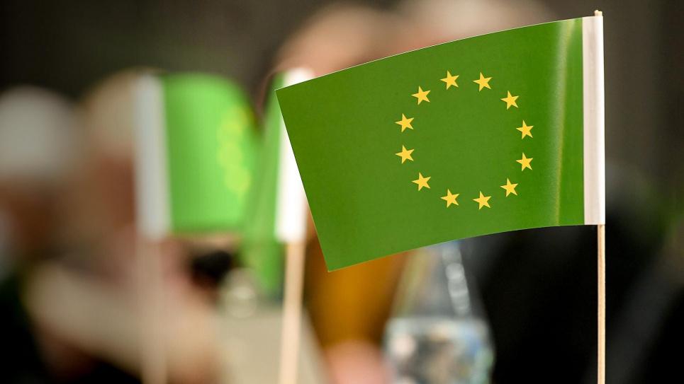 Если Украина не будет выполнять требования европейского зеленого курса, то может подвергнуться опасности