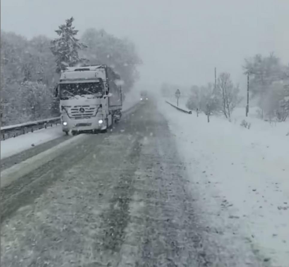 На Львівщині раптово випав сніг