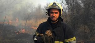 На Дніпропетровщині врятували совеня, яке постраждало через підпал