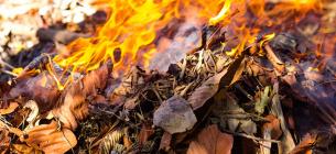 Сміттєві підпали: бензопірен і діоксини викликають онкологічні захворювання