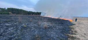 В Київській області через підпал сухостою ледь не згоріло село