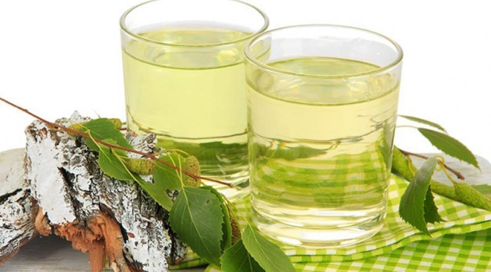 Какие болезни лечит березовый сок и кому полезно пить этот чудо-напиток