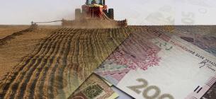 Уряд виділив додаткові гроші для підтримки сільськогосподарських виробників