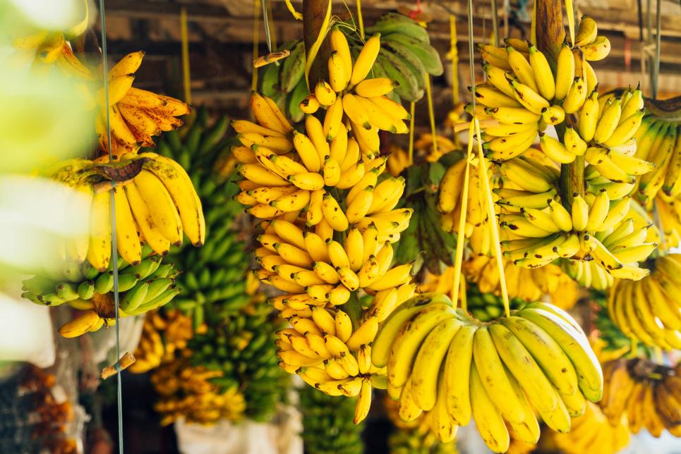 Українці та жителі всієї планети можуть залишитися без найпопулярніших фруктів