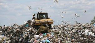 """""""Київспецтранс"""" самовільно захопив земельну ділянку поблизу сміттєвого полігону"""